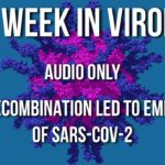 TWiV 619: Recombination led to emergence of SARS-CoV-2