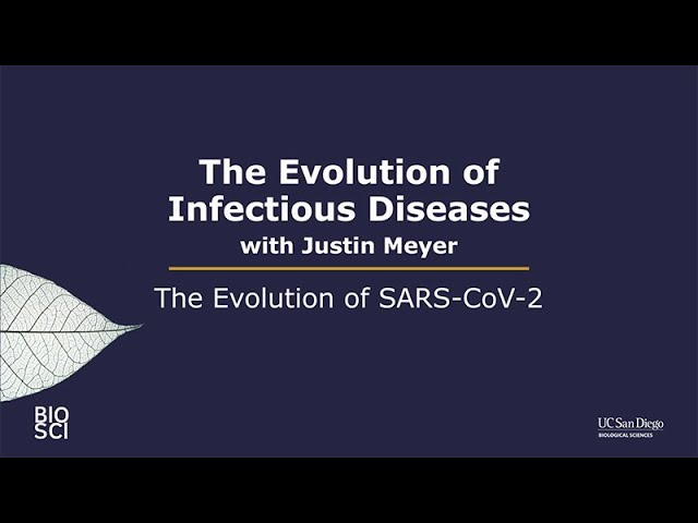 The Evolution of SARS-CoV-2