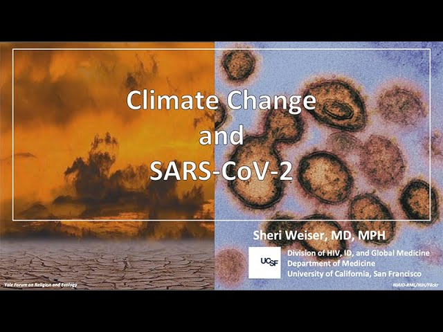 Climate Change and SARS-CoV-2