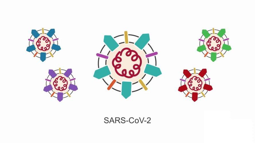 Introducing SARS-CoV-2: learn the basic principles behind this virus.