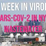 TWiV 737: SARS-CoV-2 in NYC wastewater